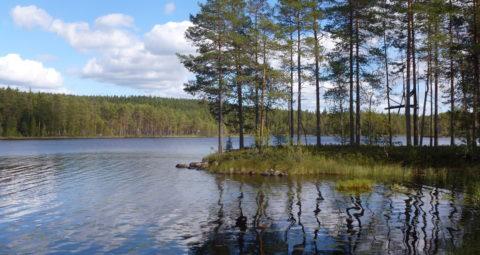 Gänsen_sjö_2013b[1]